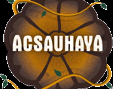 Dinge die du über ayahuasca wissen solltest